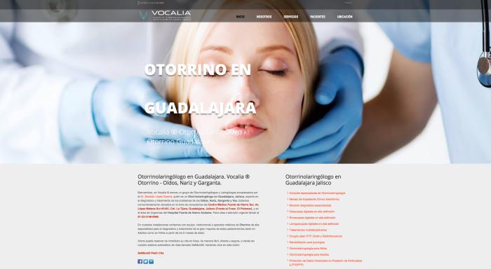 Otorrinolaringólogo - Oídos, Nariz, Garganta y Voz